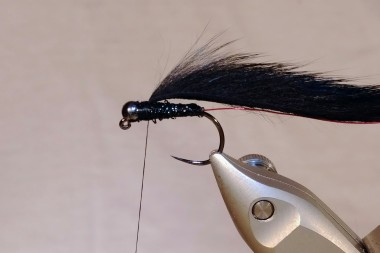 Pine Squirrel strip tied in right behind bead.