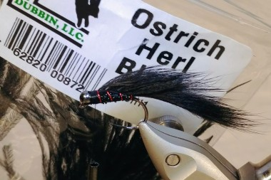 Black Ostirch Herl for the collar.